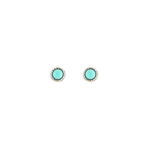 JE13546 - TURQUOISE/SILVER